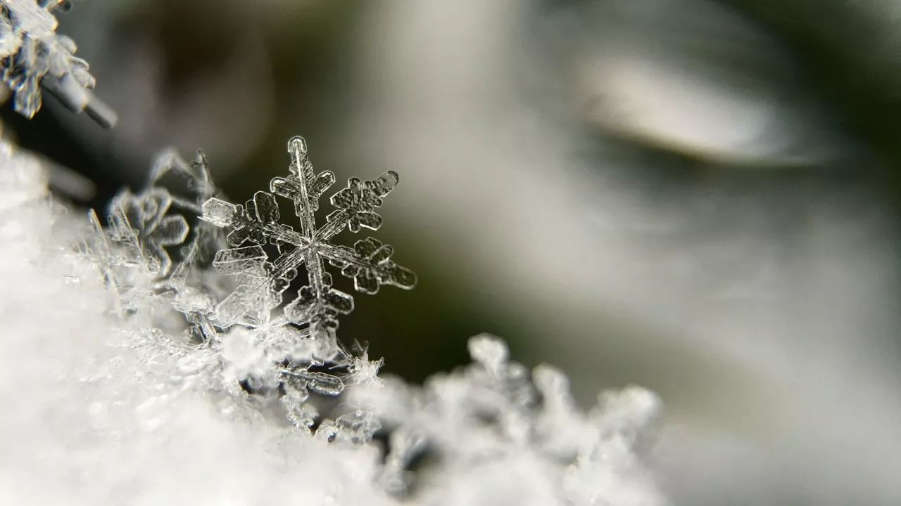 诗词丨雪的 24 种别称,美哉今冬!
